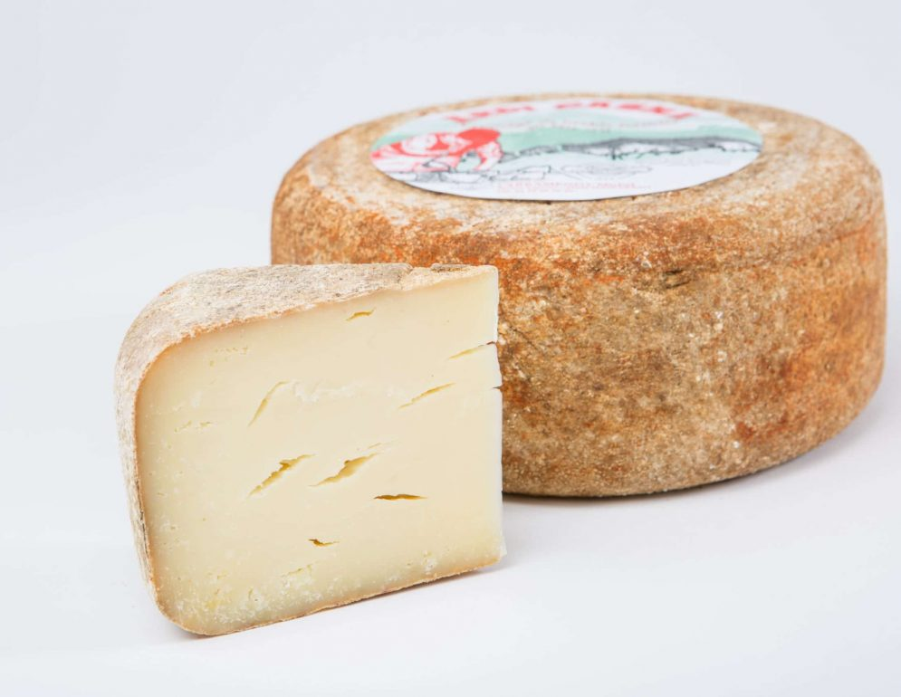 ardi gasna - fromage basque